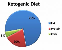 Pie chart representing the Ketogenic Diet: 75% fat, 20% protein and 5% carbohydrates